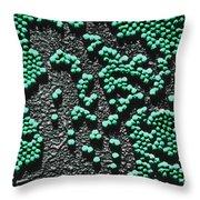 Polio Virus, Tem Throw Pillow