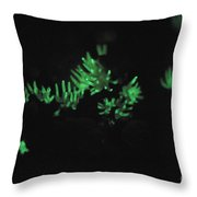 Luminescent Mushroom Panellus Stipticus Throw Pillow