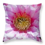 Pink Cactus Flower Throw Pillow