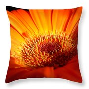 1219 Throw Pillow