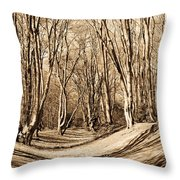 Ambresbury Banks Bronze Age Fortification Throw Pillow