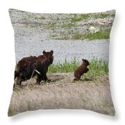 Black Bear Family Throw Pillow