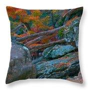 Cunningham Falls Throw Pillow