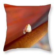 Garden Snail Throw Pillow
