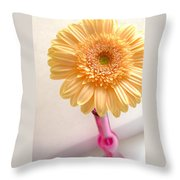1323-001.2.c1 Throw Pillow