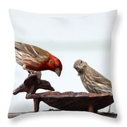 House Finch Throw Pillow