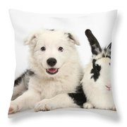 Puppy And Rabbit Throw Pillow