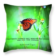 14- The Butterfly Throw Pillow