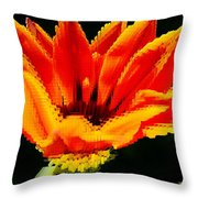 Gazania Krebsiana Flower Throw Pillow