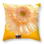 1526-002 Throw Pillow