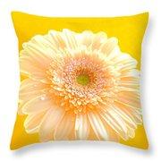 1527c-002 Throw Pillow