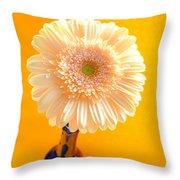 1529-002 Throw Pillow