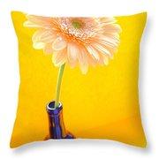 1533-001 Throw Pillow