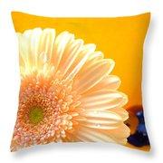 1535-001 Throw Pillow