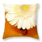 1550c Throw Pillow