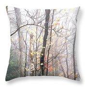 Autumn Monongahela National Forest Throw Pillow