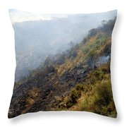 Barnett Fire Throw Pillow