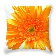 1609-001 Throw Pillow