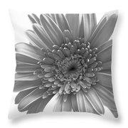 1609-002 Throw Pillow