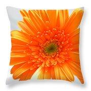 1609 Throw Pillow