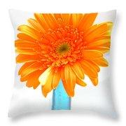 1611-002 Throw Pillow