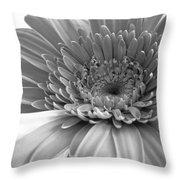 1614-002 Throw Pillow