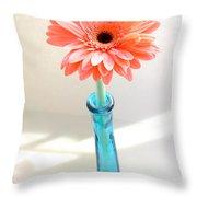 1635-002 Throw Pillow