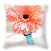 1636-002 Throw Pillow