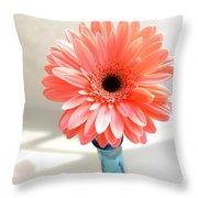 1637c-001 Throw Pillow