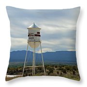 17 Throw Pillow