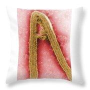 Marburg Virus, Tem Throw Pillow
