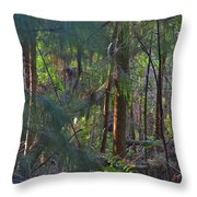 17- Welcome To The Jungle Throw Pillow