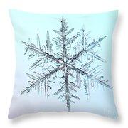 Snowflake Throw Pillow