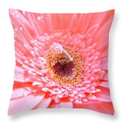 1733-001 Throw Pillow