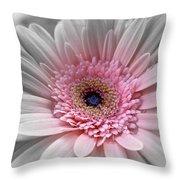 181111e Throw Pillow
