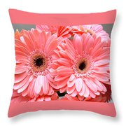 1856-004 Throw Pillow