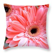 1866a1-001 Throw Pillow