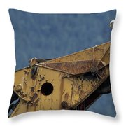 A Northern American Bald Eagle Throw Pillow