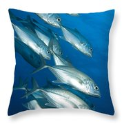 A School Of Bigeye Trevally, Papua New Throw Pillow