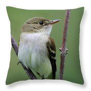 Alder Flycatcher Throw Pillow