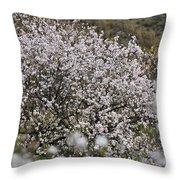 Almendros Throw Pillow