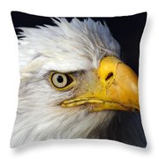 An Eye On You Throw Pillow