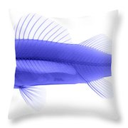 An X-ray Of Yellow Perch Throw Pillow