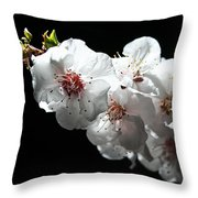 Apricot Flowers At Night Throw Pillow