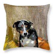 Australian Cattle Dog Sheltie Mix Throw Pillow