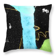 Bacterial Conjugation, Tem Throw Pillow by Anderson / Omikron