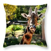 Baringo Giraffe Throw Pillow
