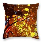 Beautiful Fall ... Throw Pillow