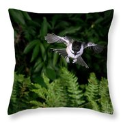 Black-capped Chickadee In Flight Throw Pillow