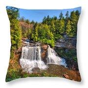 Blackwater Falls Sp Throw Pillow
